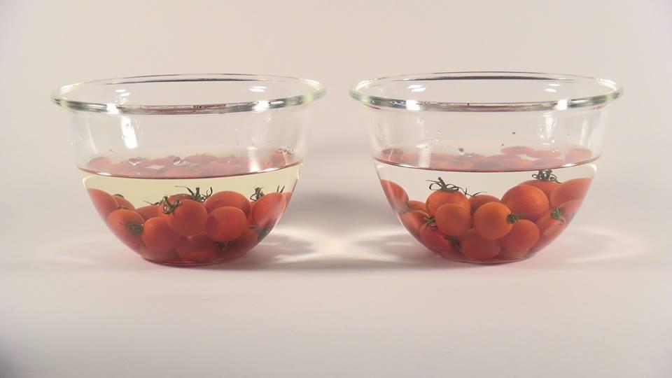 プチトマトを水道水とアルカリイオン水で洗った水の色を比較