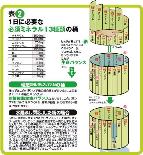 1日に必要な必須ミネラル13種類の桶