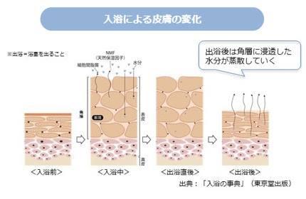 入浴による皮膚の変化