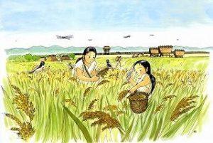 eat-rice