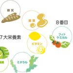 7大栄養素のイラスト