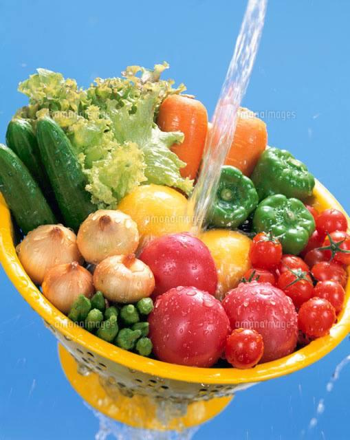 たくさんの種類の野菜を水で洗う写真