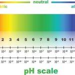 pHスケールのイラスト